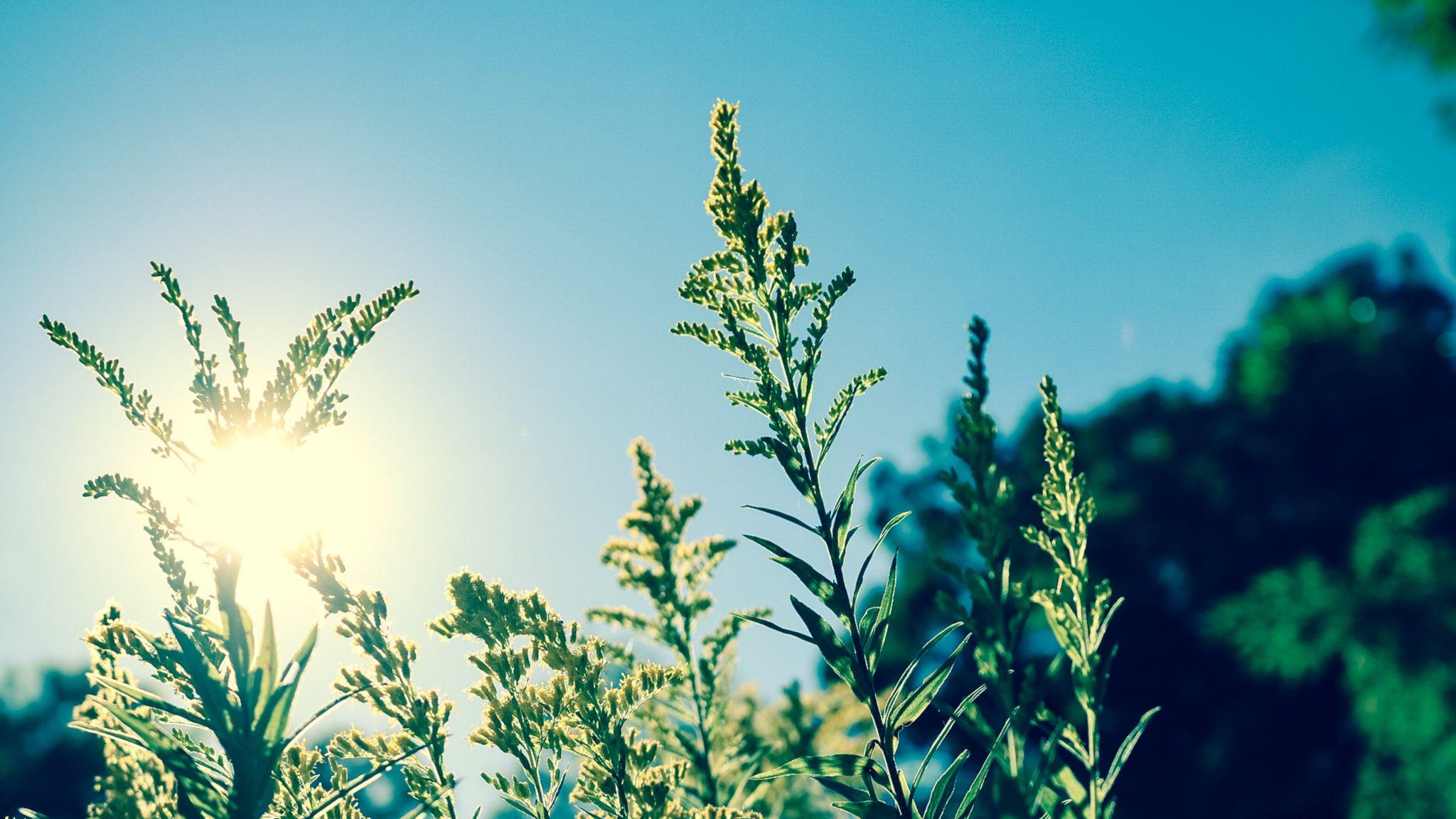 Information om solskydd hos MyBeauty Clinic